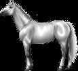 Holsteiner ##STADE## - robe 289