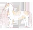 Paint horse ##STADE## - robe 1000000074