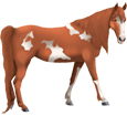 Paint horse adulte - robe 1000000116