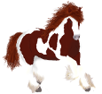 Paint horse adulte - robe 1000000163