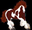 Paint horse ##STADE## - robe 1000000163
