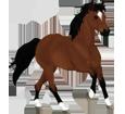 Paint horse ##STADE## - robe 205
