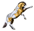 Mustang ##STADE## - robe 1000000129