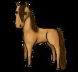 Cheval de Przewalski adulte - robe 1000000168
