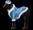 Altaï poulain - robe 420